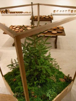 crate_tree_dwell3